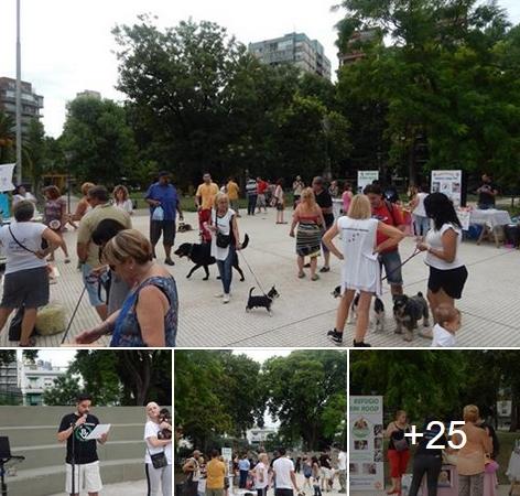 Activa participación de Bandera Vecinal en evento solidario en defensa de los derechos de los animales